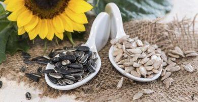 Semilla de girasol: un gran aliado para adelgazar