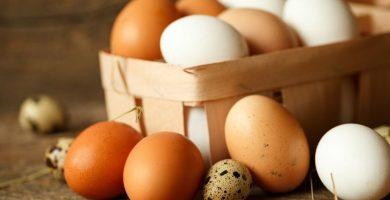 Huevo marrón o huevo blanco: ¿cuál es la diferencia y cuál es mejor?
